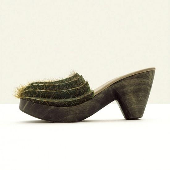 туфли кактус странные туфли